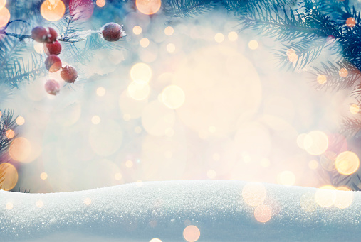 Pine tree background for Christmas decoration with snow and defocused lights
