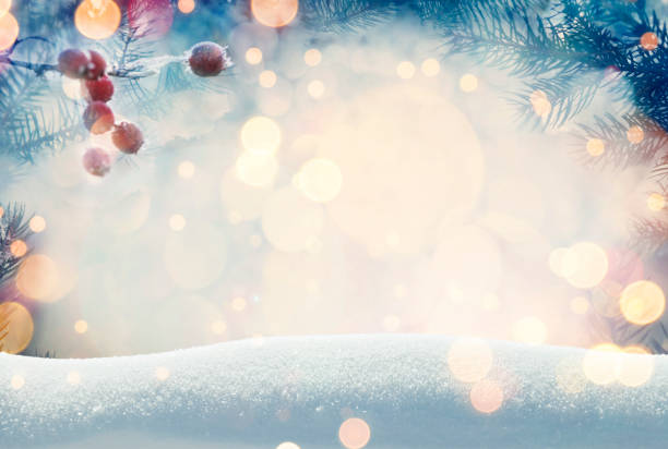Pine tree background for Christmas decoration with snow and defocused lights stock photo