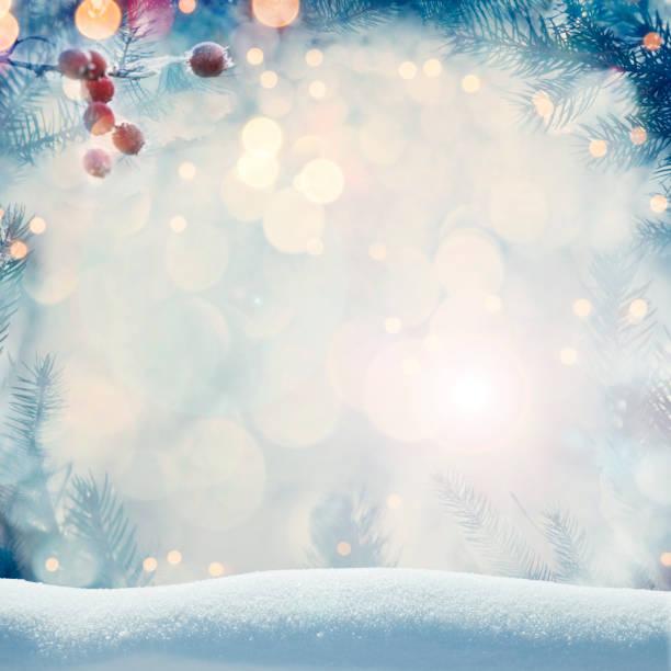 Kieferhintergrund für Weihnachtsdekoration mit Schnee und defokussierten Lichtern – Foto