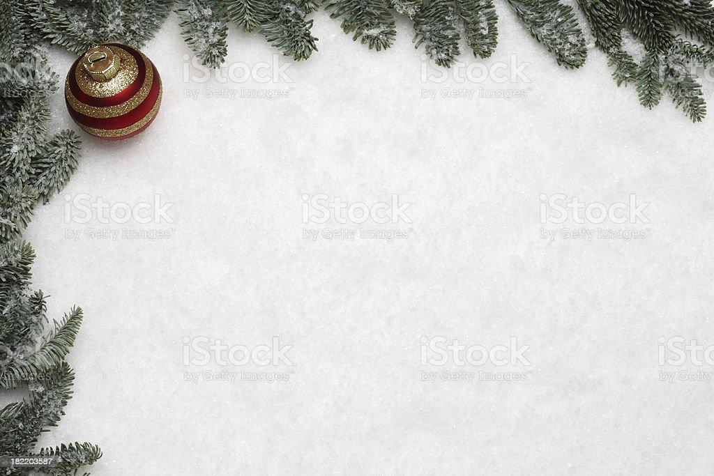 Pine tree frame on snow background royalty-free stock photo