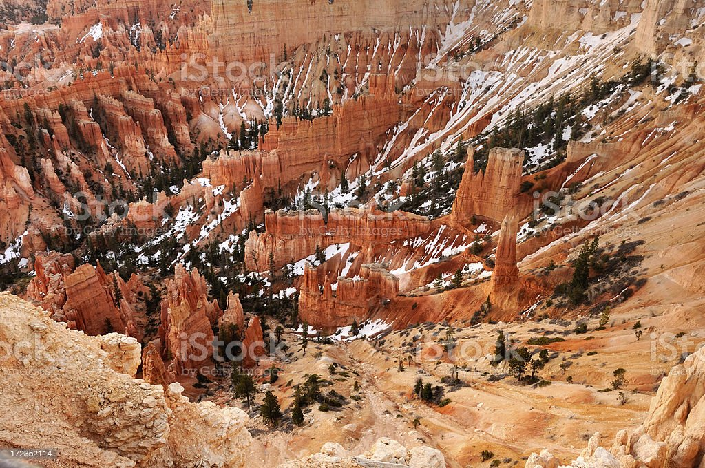 Pine trees among bright orange walls of Bryce Canyon royalty-free stock photo