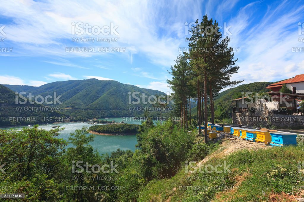 Pine trees, beehives at Vacha dam in Rhodopes, Bulgaria stock photo