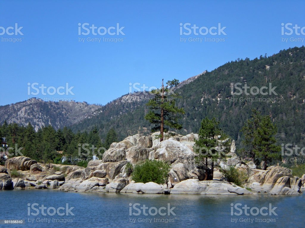Pine Trees By Big Bear Lake stock photo