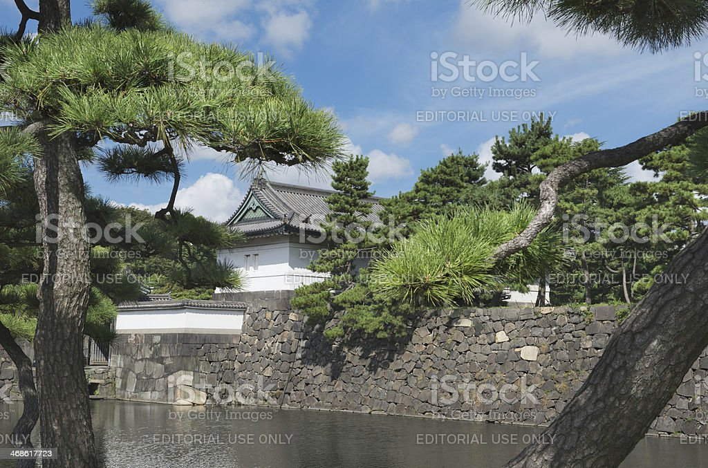 Pine trees, moat and stone wall outside Tokyo Imperial Palace royalty-free stock photo