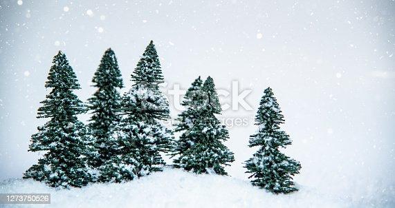 istock Pine Trees 1273750526