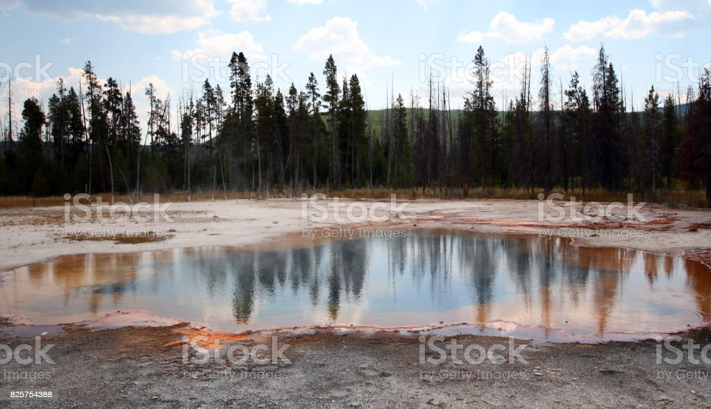 Pine trees reflecting in Emerald Pool hot spring in the Black Sand Geyser Basin in Yellowstone National Park in Wyoming USA stock photo