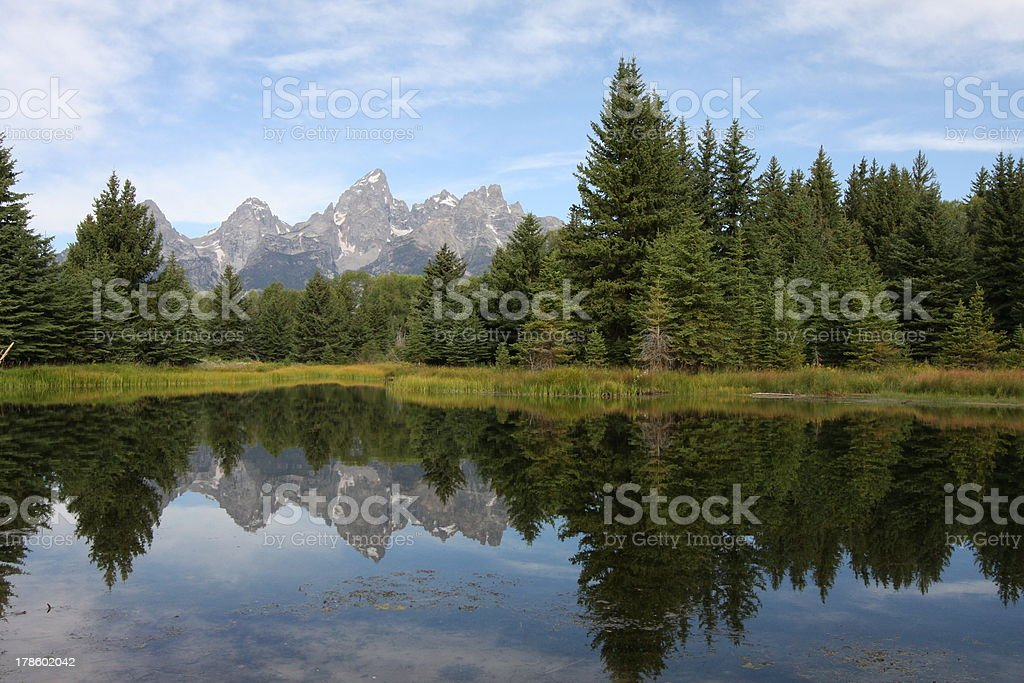 Pine Trees Reflecting Teton Mountains and forest reflecting in water Blue Stock Photo