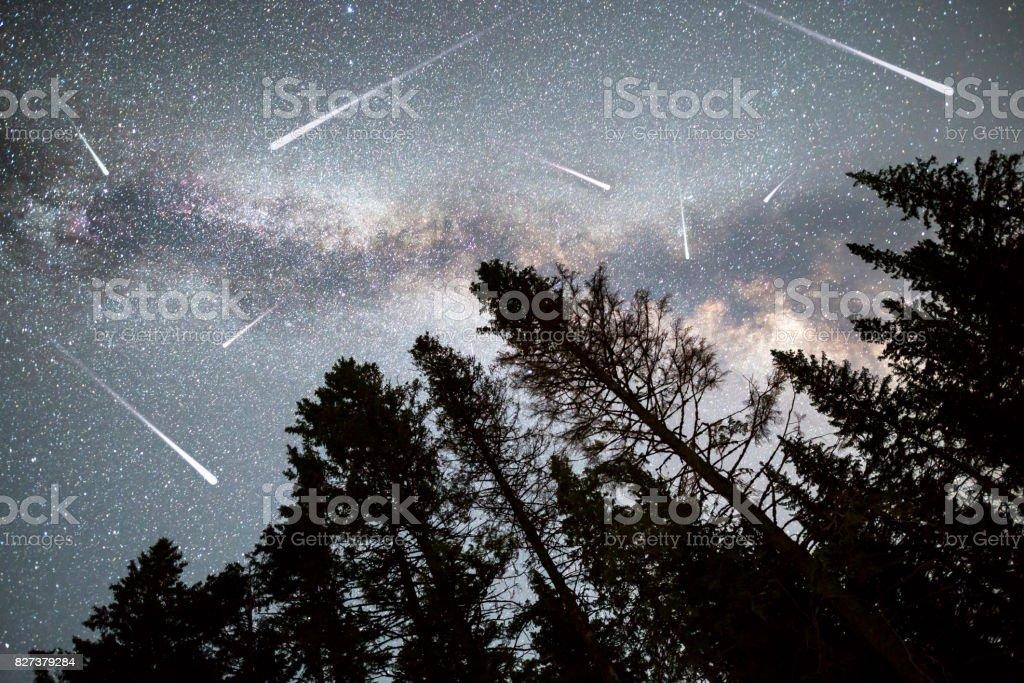 Pine trees silhouette Milky Way falling stars stock photo