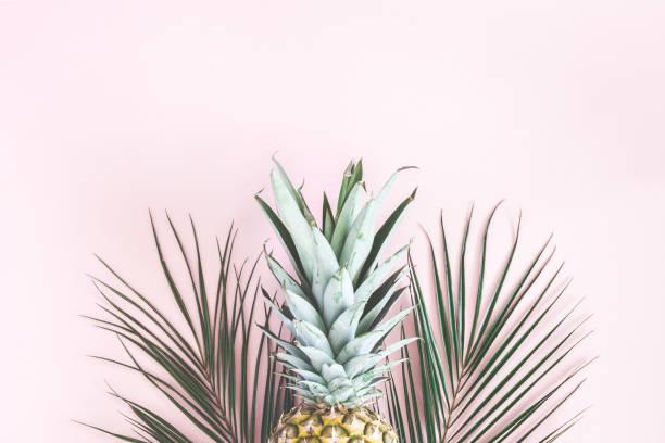 ananas et palmiers tropicaux feuilles sur fond rose pastel - motif tropical photos et images de collection