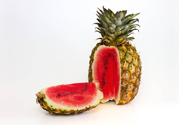 pineapple containing a watermelon - genetic modification stock pictures, royalty-free photos & images
