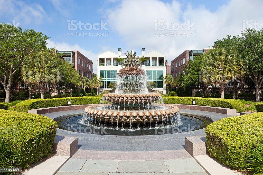 Pineapple Fountain In Charleston, South Carolina royalty-free stock photo