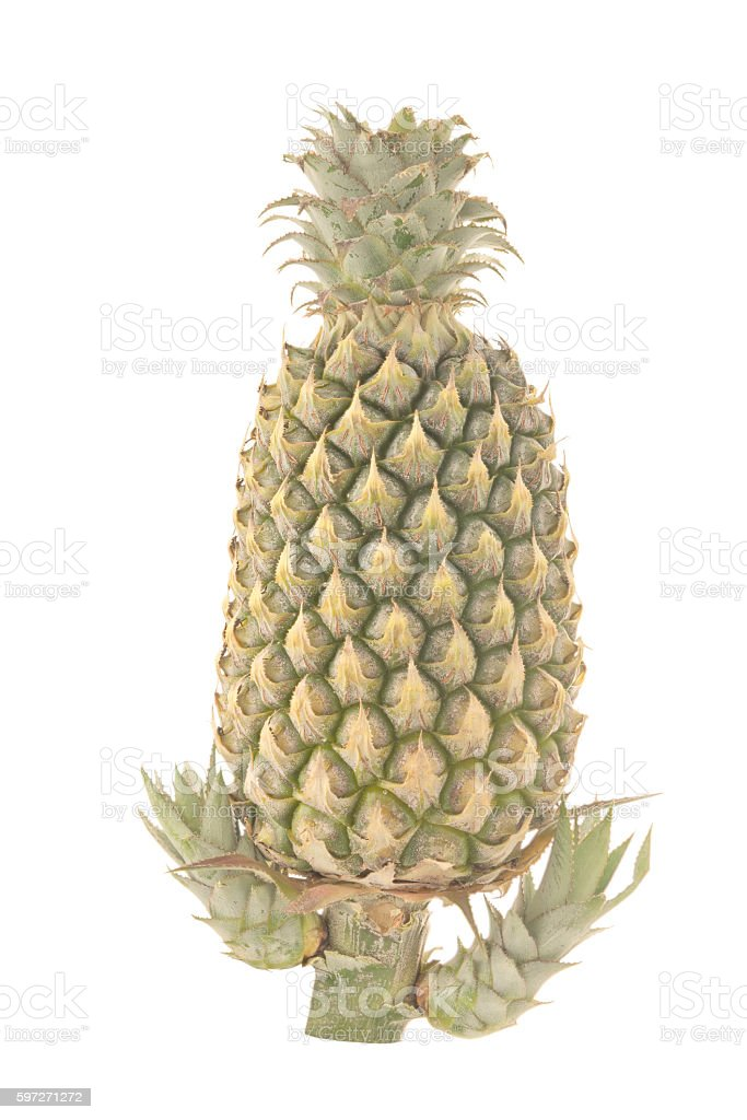 Pineapple isolated royalty-free stock photo