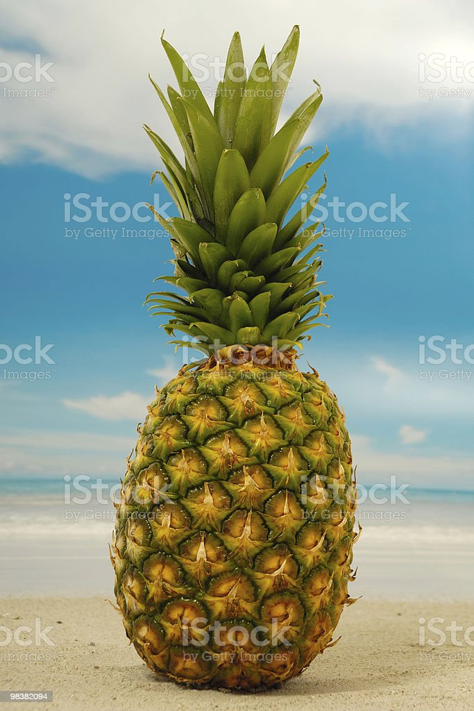 Pineapple on an exotic beach with blue and cloudy sky royalty-free stock photo