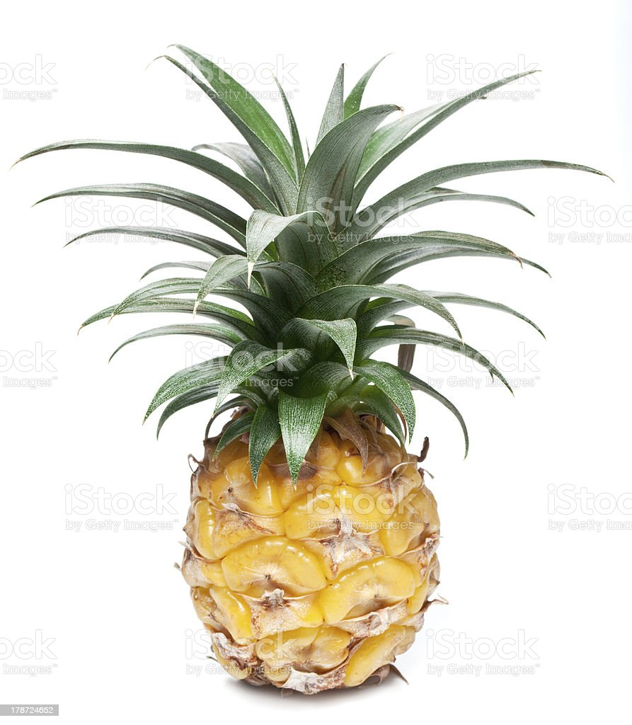 Pineapple. royalty-free stock photo
