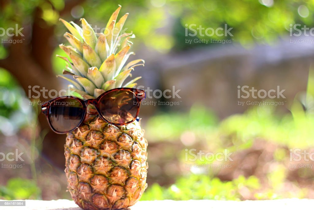 Pineapple photo libre de droits