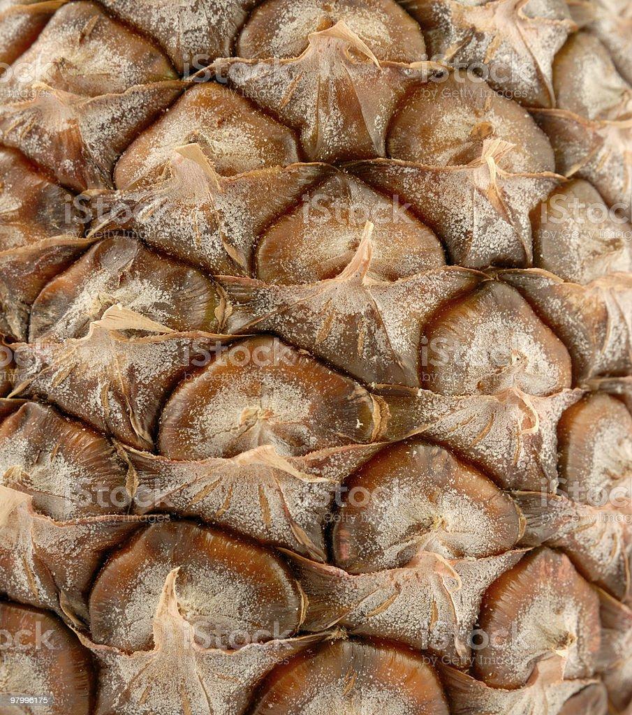 Pineapple royalty free stockfoto