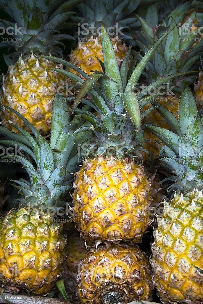 Pineapples foto de stock libre de derechos