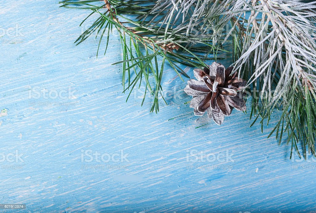 Pinecone and pine branch. In the corner of the frame. stock photo