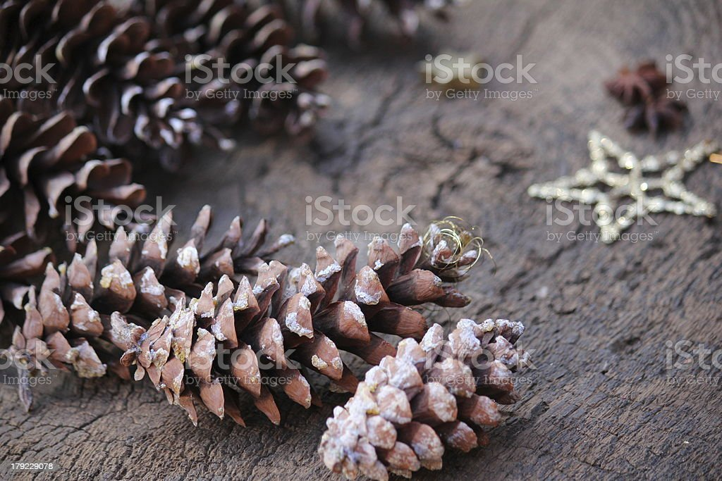 Pinecone Christmas royalty-free stock photo