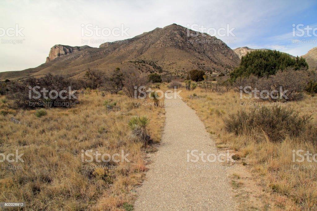 Pinery Trail stock photo