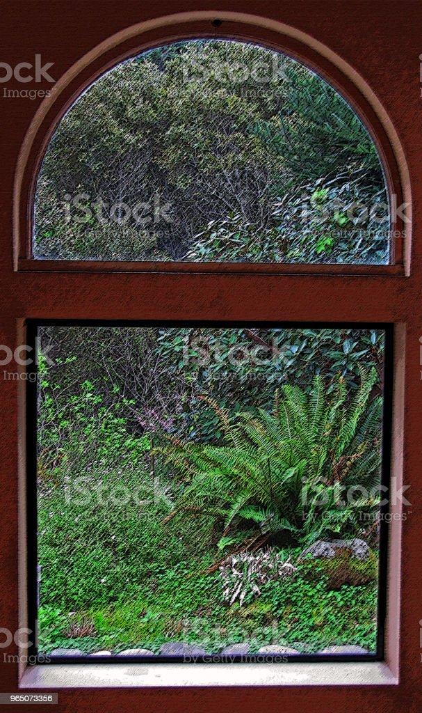GARDEN SCENE Pines and Ferns Through Window zbiór zdjęć royalty-free