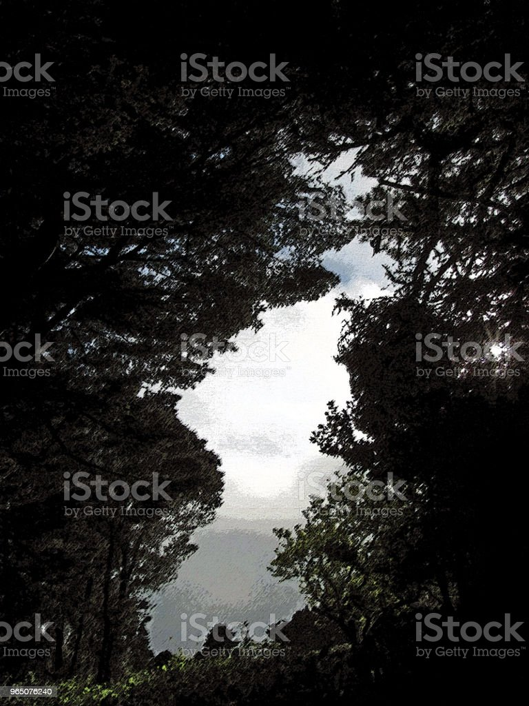 GARDEN SCENE Pines and Ferns with Clouds zbiór zdjęć royalty-free