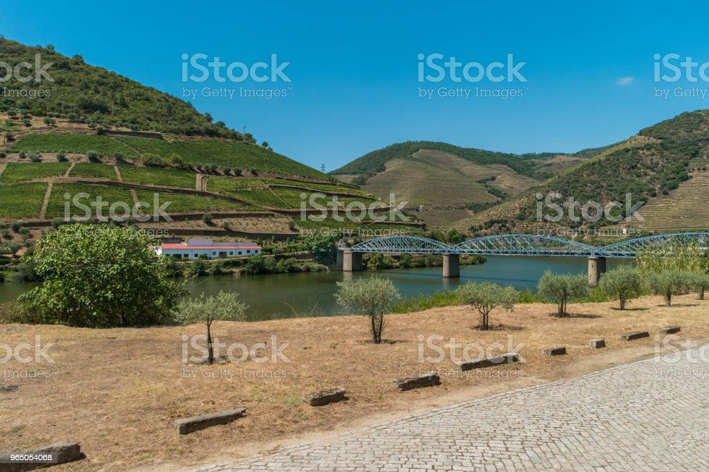 Pinhao bridge and terraced vineyards in Douro Valley Alto Douro Wine Region in northern Portugal officially designated by UNESCO as World Heritage Site royalty-free stock photo