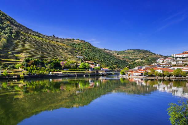 pinhao town and landscape of douro river - douro imagens e fotografias de stock