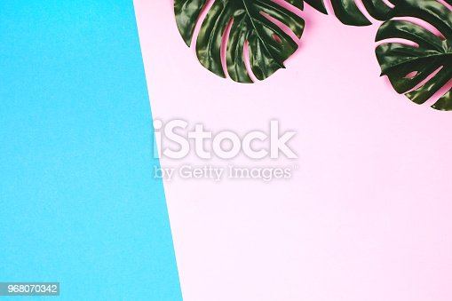 istock Pink and blue background with tropical leaves 968070342