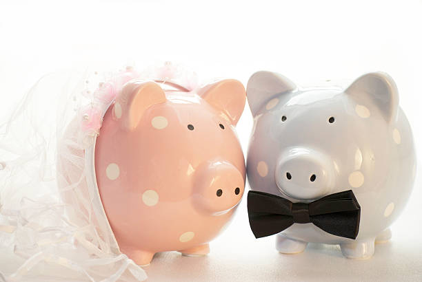 Pink and blue pig ornaments dressed like bride and groom stock photo