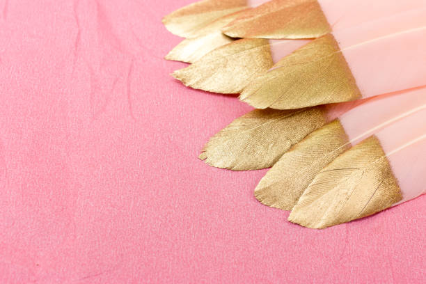 Pink and gold feathers on a pink background picture id1157629850?b=1&k=6&m=1157629850&s=612x612&w=0&h=kijv6vs04o dyjnlajedqkala7fe1dhrn94o9fjvtki=