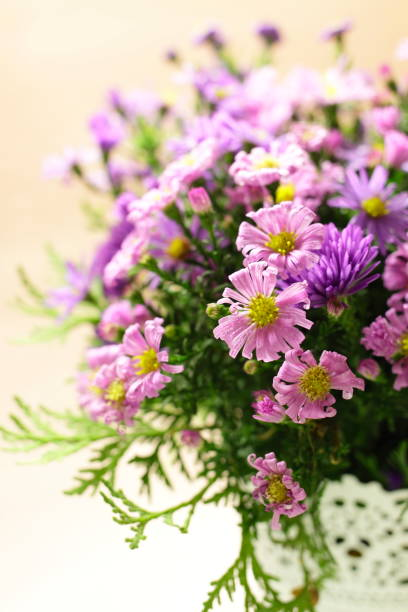 rosa und lila astern in der vase auf einem licht. ein strauß herbstblumen aus nächster nähe. - herbst hochzeitseinladungen stock-fotos und bilder