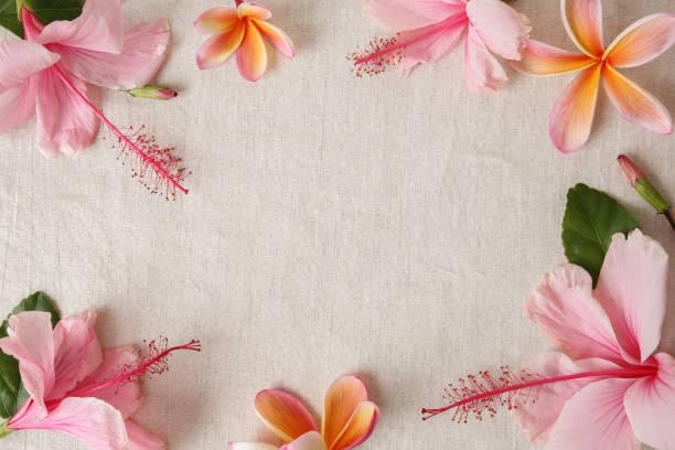 Pink and orange summer flowers on linen copy space background picture id695379412?b=1&k=6&m=695379412&s=612x612&w=0&h=wrxzjenlxl0z7j22w23 bk65pl1eheokdx77e2j0uqw=