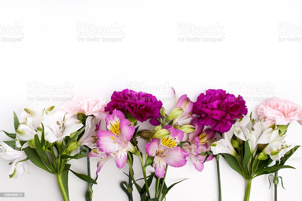 Pink and purple gillyflowers with alstroemeria on white backgrou stock photo