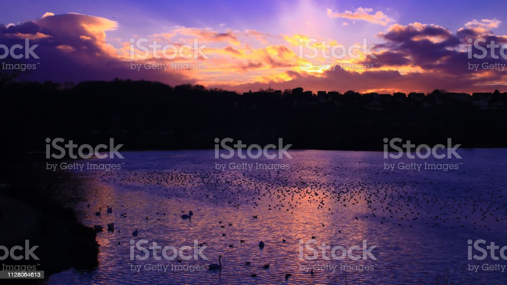 Pink And Purple Sunset With Beautiful Clouds Over Water Stock Photo Download Image Now Istock