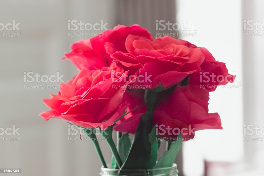 Pink and Romantic royalty-free stock photo
