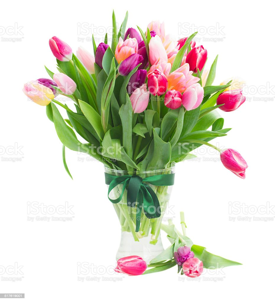 pink and violet tulips bouquet in vase stock photo