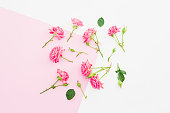Pink and white background with pink flowers. Flat lay. Top view