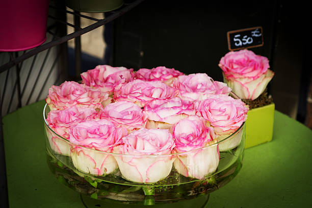Pink and white roses in a bowl picture id474928813?b=1&k=6&m=474928813&s=612x612&w=0&h=ppauqjtqvhutovqczglo35nnyfoiwcfa6o2yqtufwgy=