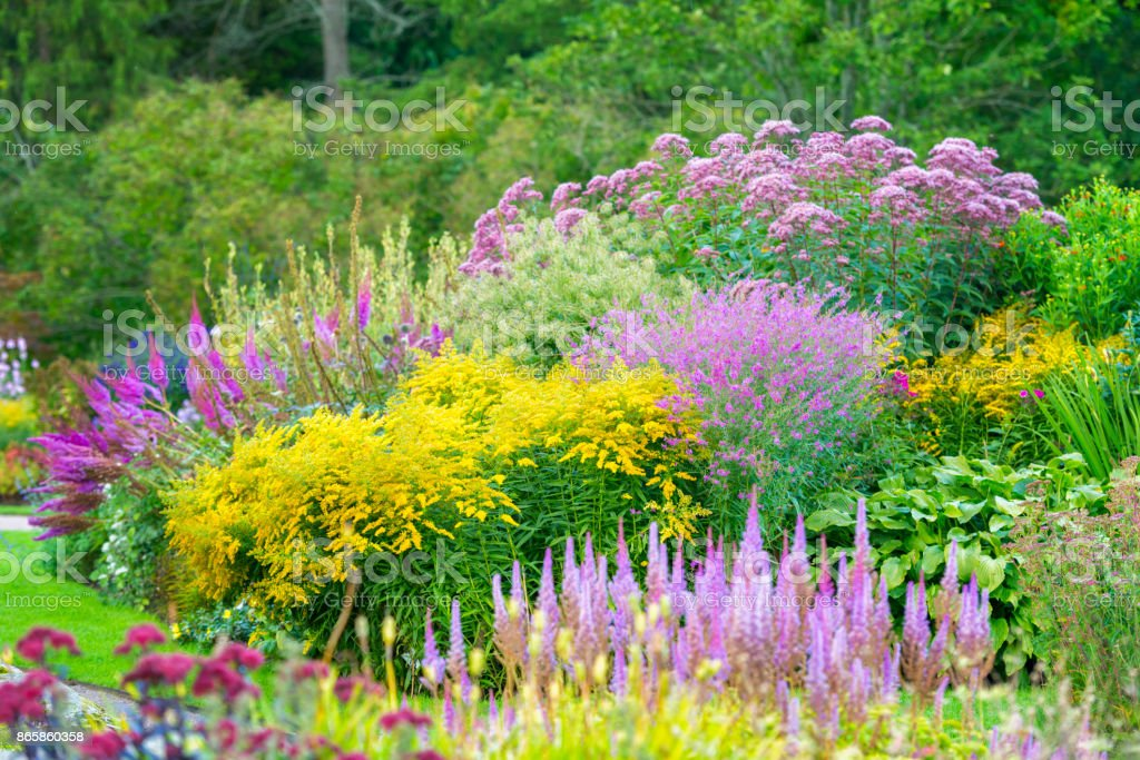Pink and yellow flowerbeds in ornamental garden stock photo