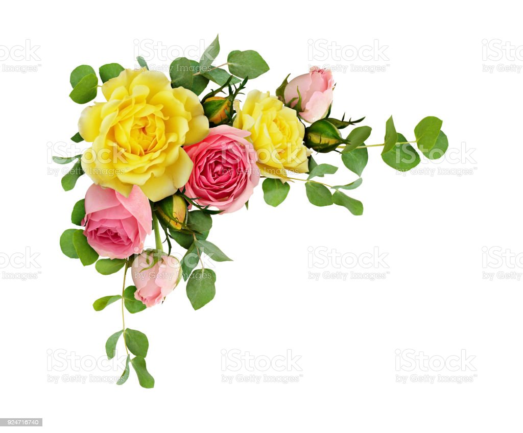 Pink And Yellow Rose Flowers With Eucalyptus Leaves Stock Photo