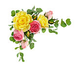 istock Pink and yellow rose flowers with eucalyptus leaves 924716740