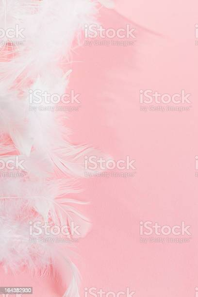 Pink Background With Fluffy Feathers Stock Photo - Download Image Now