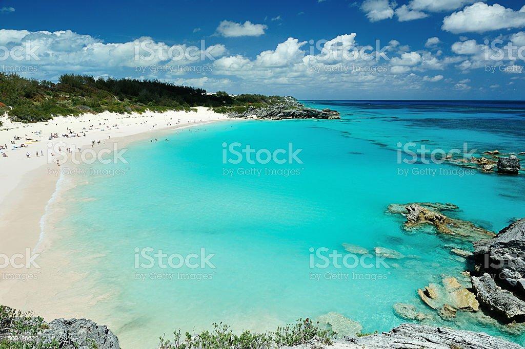 Różowy plaży w bermudy-wyspy – zdjęcie