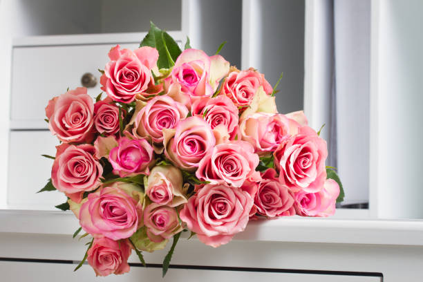 Pink blooming roses on wood picture id914662766?b=1&k=6&m=914662766&s=612x612&w=0&h=hrqzuxiybduw9yxazbup2ip2gxvdoe lylkkgmlxtnu=