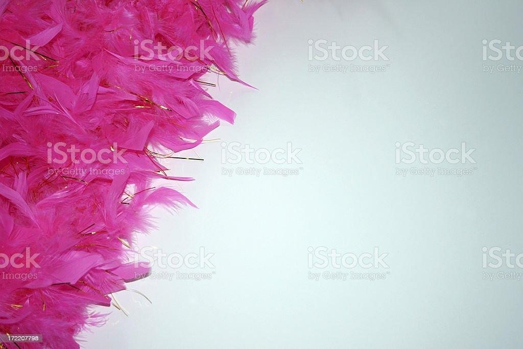 Pink Boa stock photo