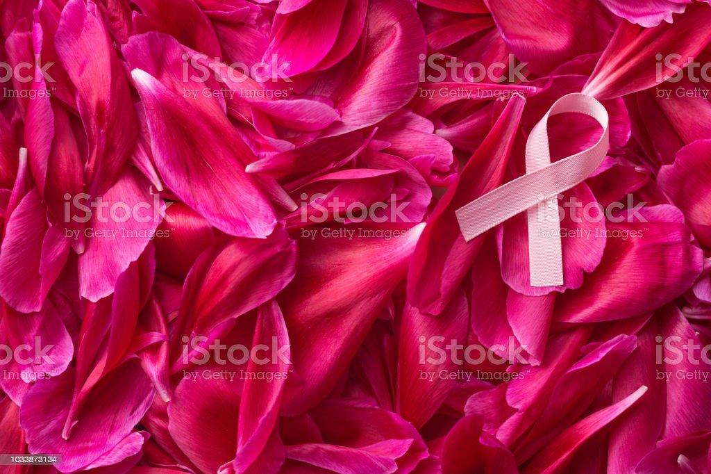 Rosa Brust-Krebs-Schleife auf Blüte Hintergrund. Ansicht von oben. – Foto