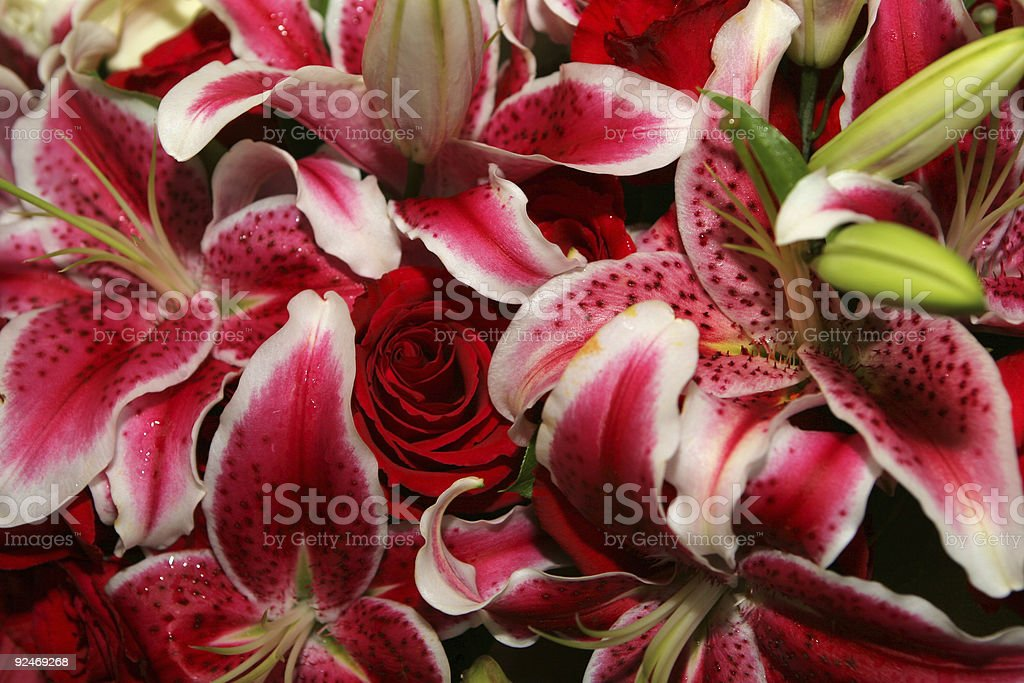 Pink Bridal Boquet royalty-free stock photo
