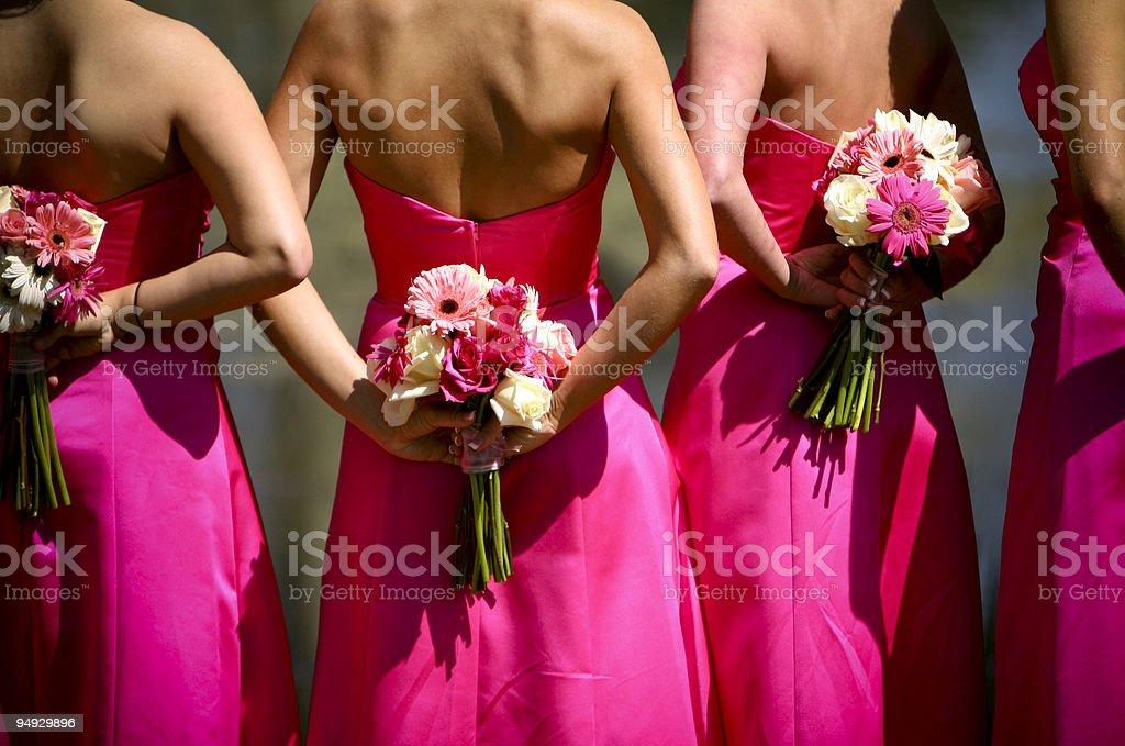 Pink Bridesmaids Wedding Dress Portraits royalty-free stock photo