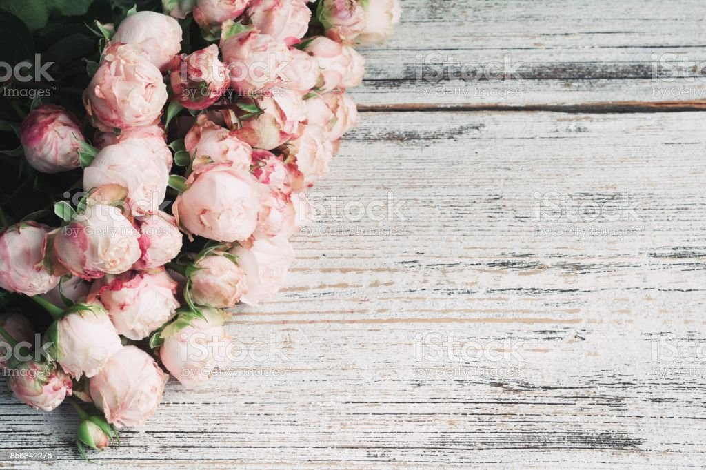 Pink bush roses on vintage wooden background with copy space for text. Wedding floral frame stock photo